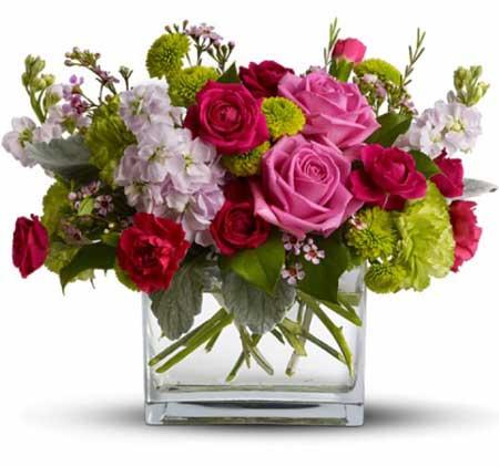 Güzel insanlara Güzel Çiçekler...